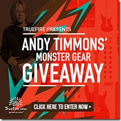 Concurs Andy Timmons