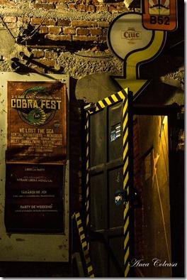 Cobra Fest 1.0, by Anca Coleașă 2017