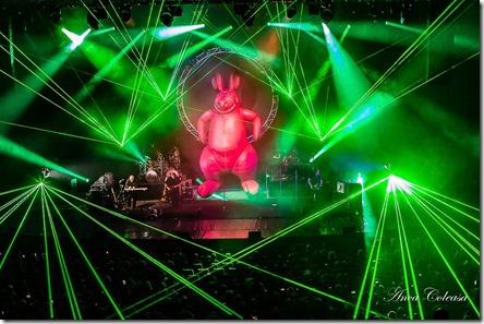 The Australian Pink Floyd Show - by Anca Coleașă, 2018
